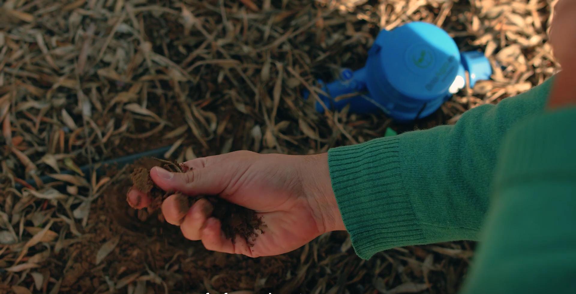 soil-moisture-touch